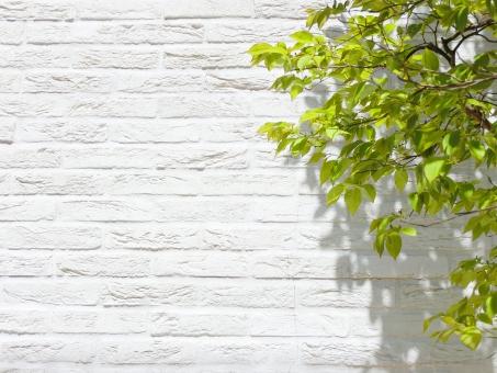施工事例① N様新築賃貸戸建の企画 老朽化アパート(現況)